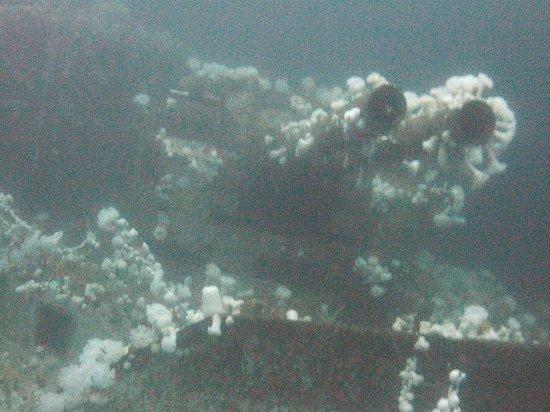 Sundown Divers: Bow guns HMCS Saskatchewan