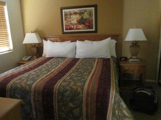 Oasis Villa Resort : Comfy king bed