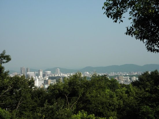 Okayama International Hotel: View of Okayama from the hotel