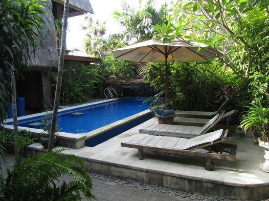 Aahh Bali Bed & Breakfast: Pool area