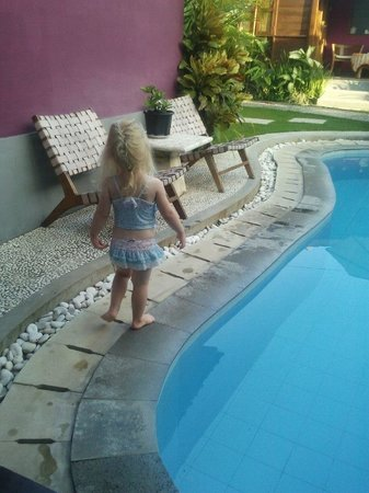 Andy's Surf Villa and Bungalows: Princess of the House...