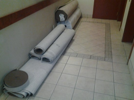 Comfort Inn & Suites South: hallway 3