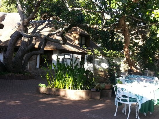 Moontide Guest House : Breakfat under a 400 Year Old Tree