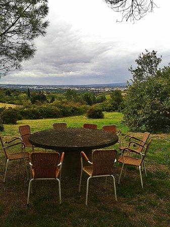 La Maison sur la Colline : Вид на виноградники