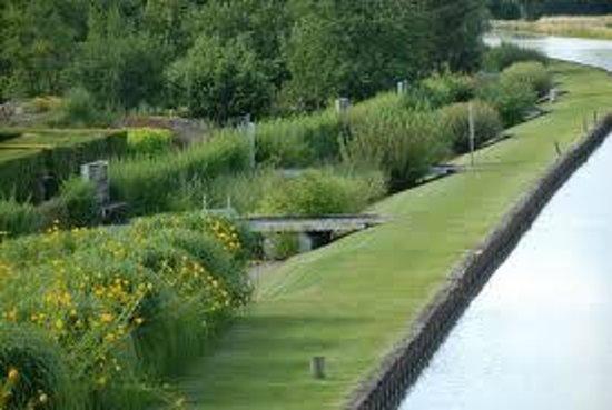 jardin aquatique photo de belleville sur loire cher tripadvisor. Black Bedroom Furniture Sets. Home Design Ideas
