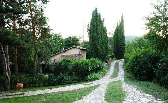 B&B Countryhouse Suites & Apt. Vescovado: Back view Garden