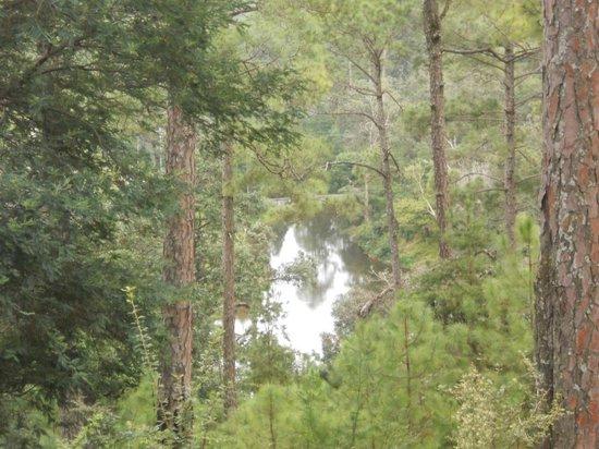 Ranikhet, Indie: Rani Jheel
