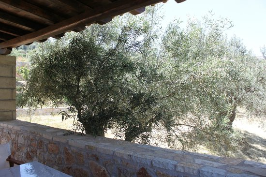 Klymeni Traditional Homes: balcony
