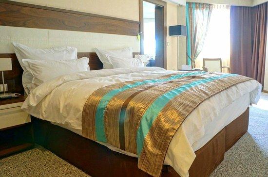 Hotel Bristol Sarajevo: Deluxe King Room