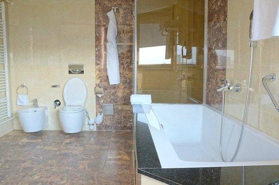 Hotel Bristol Sarajevo: Bathtub and Shower