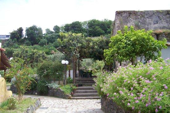 La Marticana: Garden