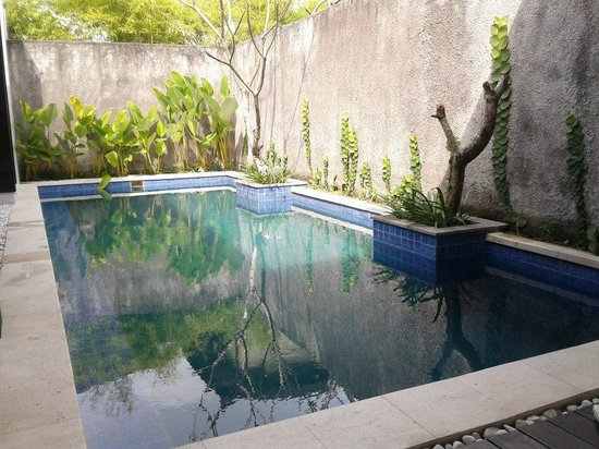 The Jineng Villas: private pool