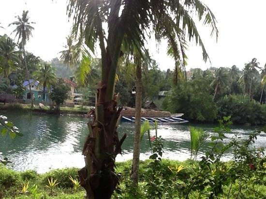 Loboc River Resort: view from our balcony. we also took a kayak down the river
