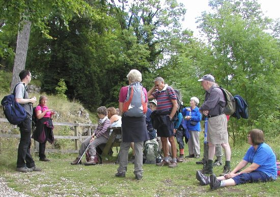 Sally Mosley Guided Walks: Catching our breath!
