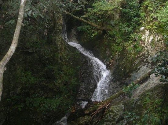 Dokko Falls: 不二の滝