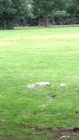 The Alice Lisle: Empty bottles and glassed in the feild in front of the pub!