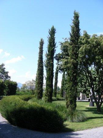 Enea Baummuseum: Baummuseum 2