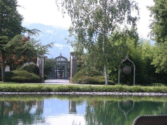 Enea Baummuseum: Baummuseum 1