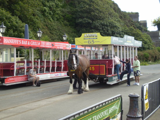 Douglas Bay Horse Tramway: Proper horse power