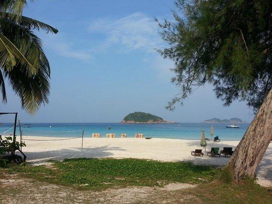 Coral Redang Island Resort: la spiaggia