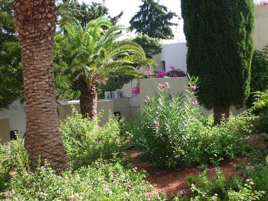 Galaxy Villas: Garten
