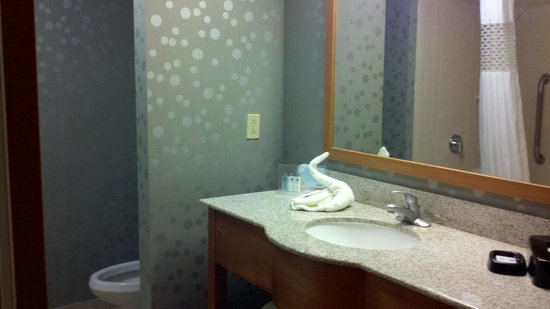 Hampton Inn & Suites St. Louis at Forest Park : Nice decoration in the bathrooms.  Fun towel folding was a nice surprise.