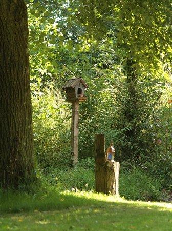 Demeure de l'Isle: La maison d'hôtes des oiseaux !