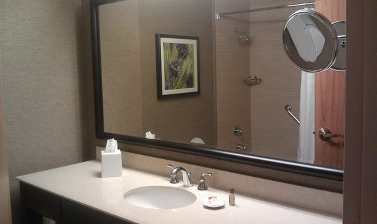 Mirror In The Bathroom Mesmerizing Nice Big Mirror In The Bathroom  Picture Of Sheraton Dallas Hotel . Decorating Design