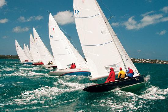 Bermuda: Race Week 2011