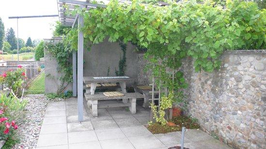 Seegartli Bed & Breakfast: Garten am See