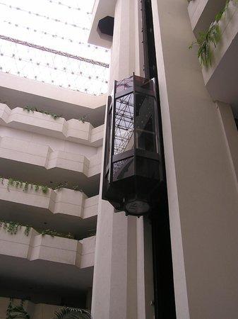 HS HOTSSON Hotel Leon: accsensore all'interno dell'hall