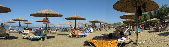 Amalthia Beach Resort : Strand-Panorama