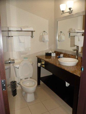 BEST WESTERN PLUS Fort Lauderdale Airport South Inn & Suites: Baño