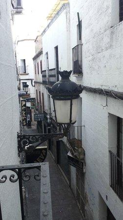 Hotel Iberia : Vista