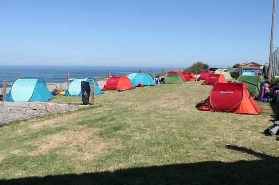 Camping 1ª O Muiño - Bungalow Park: Zona Acampada Libre