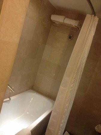 Sheraton Amman Al Nabil Hotel : Ducha