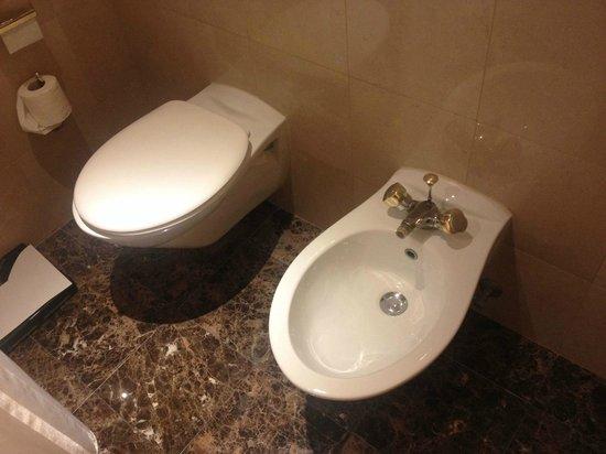 Sheraton Amman Al Nabil Hotel: WC