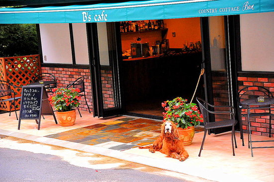 Kawaguchiko Country Cottage Ban: We are dog friendly! @Cafe