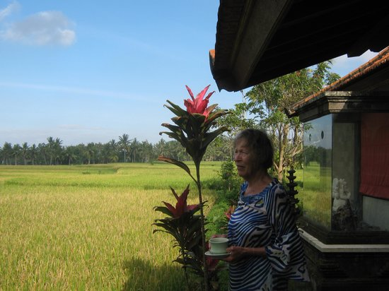 Green Field Hotel and Bungalows: view of the rice fields