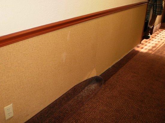 La Quinta Inn & Suites: Hallway outside room