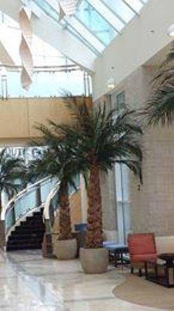 Sheraton Myrtle Beach Convention Center Hotel: lobby 2