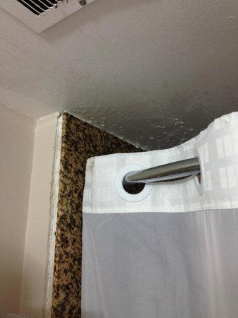Super 8 Huntsville: Shower