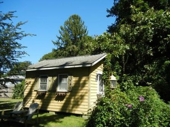 Beech Tree Cottages: cottage 5
