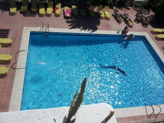Mikes House: pool