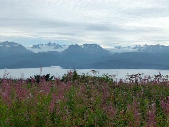Good Karma Inn : Kachemak Bay and Kenai Peninsula, Alaska