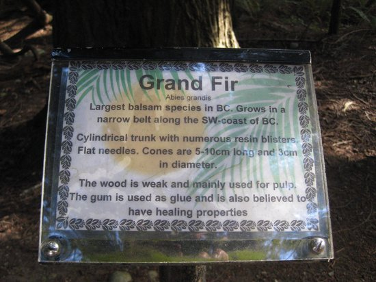Willingdon Beach Trail: Descriptive plaque.