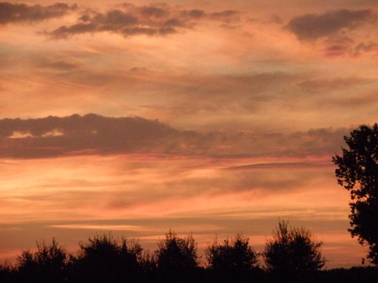 Massugas, France : sunset from garden