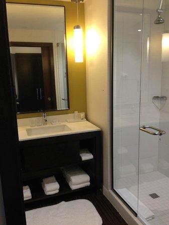 The Alexander: bathroom-spotless!