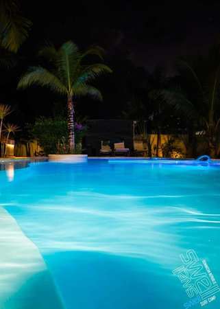 Swell Surf Camp: Pool at night