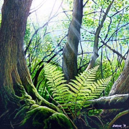 Zorian Artworks: Woodland Fern